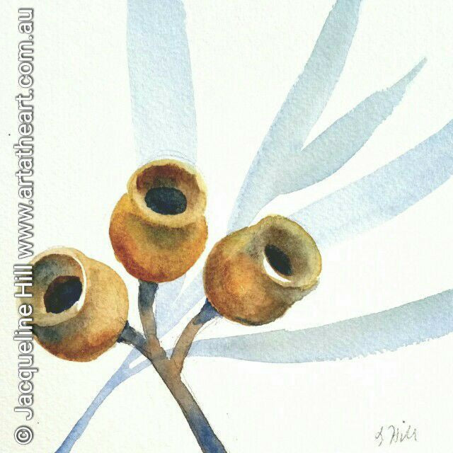 "DA041 ""Blue & Gold (Winter Gumnuts)"" Original Watercolour Painting apx 6x6"" / 15cm sq by Jacqueline Hill"