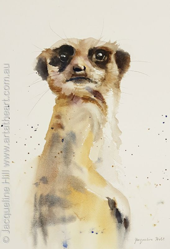 "DA132 ""The Sentinel - Meerkat"" Original Watercolour Painting by Jacqueline Hill"