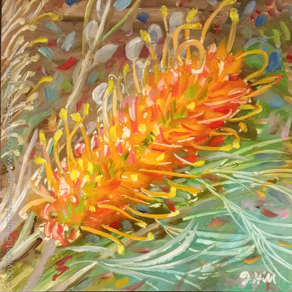 "DP319 ""Grevillea"" Original Oil on Panel Painting by Jacqueline Hill"