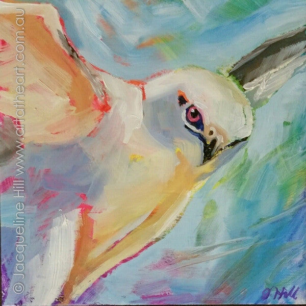 "DP340 ""Hawkeye"" (White Hawk) Original Oil on Panel Painting by Jacqueline Hill"
