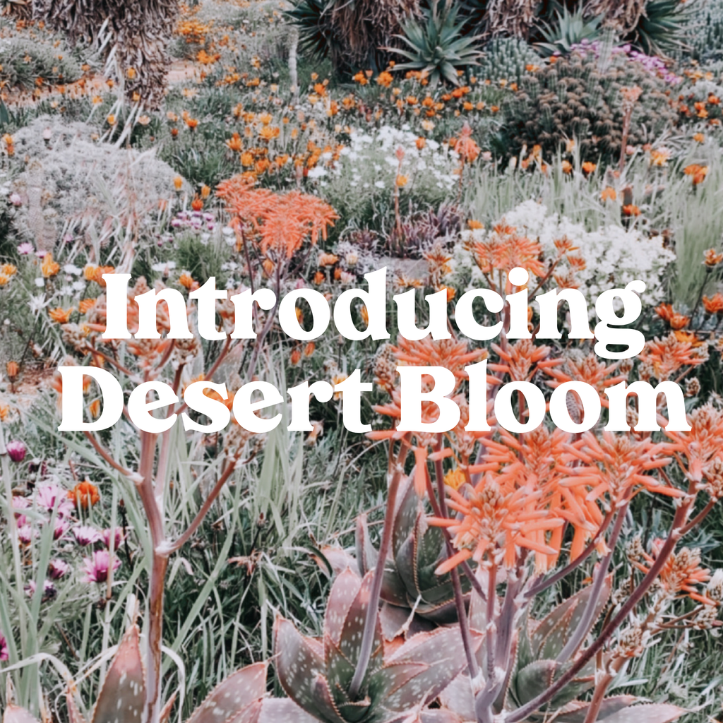 Desert Bloom Yoga & Meditation Mats Have Arrived!