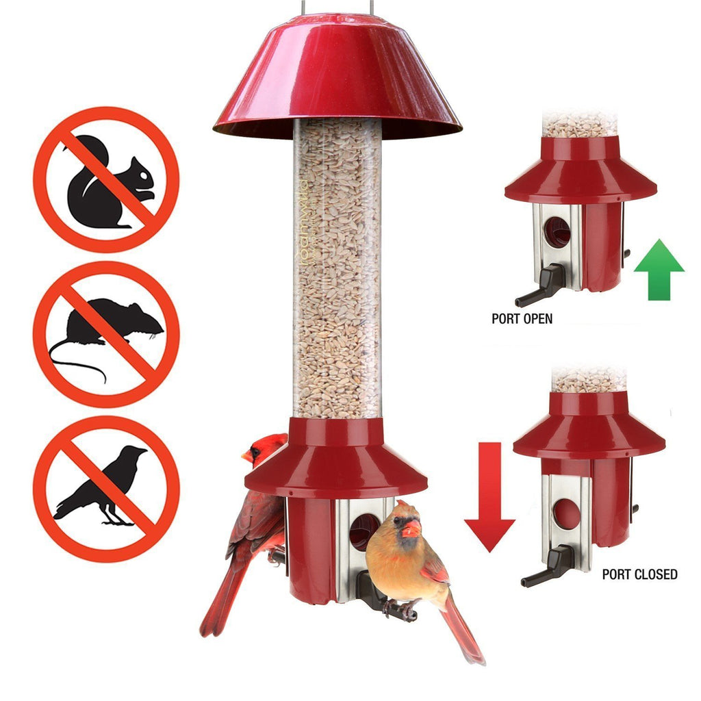 Cardinal squirrel proof bird feeder