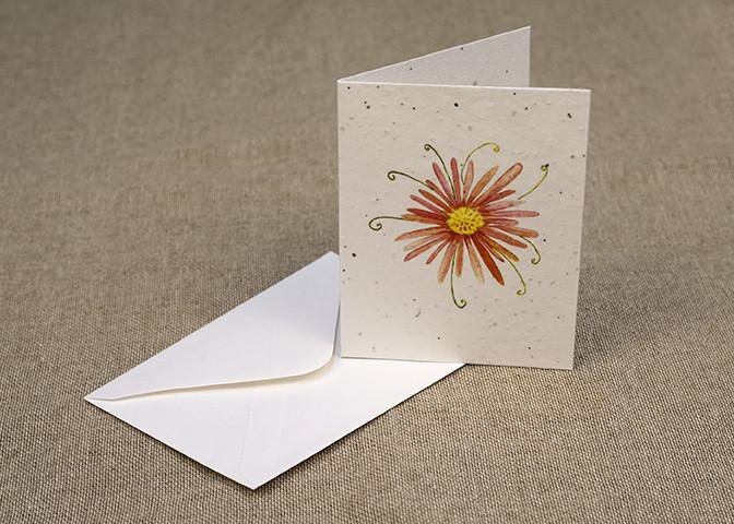 Plant-it-cards - Nature themed greetings cards - Pack of 6