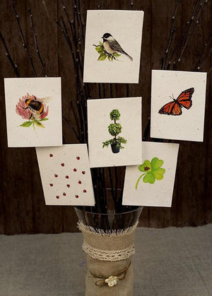 Plant-it-cards - Pack of 6 - Wildlife themed greetings cards
