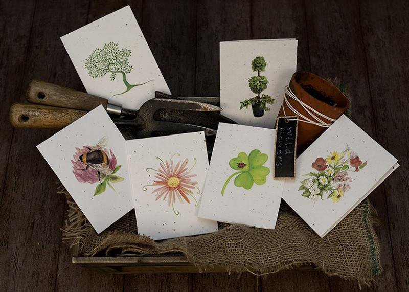 greetings cards that grow into flowers