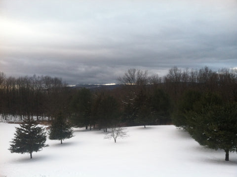 hudson valley winter land of plenty USA