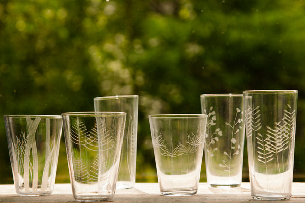 Roost Etched Botanical Glasses - Glass Collections - Shop Nectar - 1