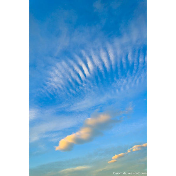 "Fine Art Cloud Photography: ""Clouds, Sky"" - art, cloud, clouds, cloudscape, cloudscapes, decor, fine art, local, local artist, local artists, Photograph, photographs, photography, wall art"