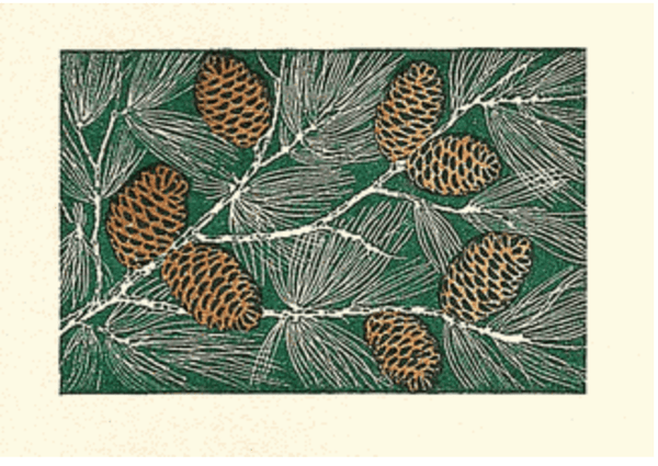 "Saturn Press ""Pinecones"" Letterpress Card"