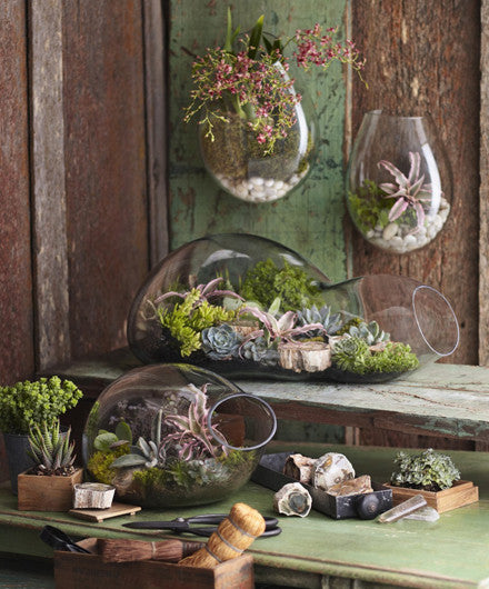 Roost Recycled Glass Bubble Terrariums - accent-details, assorted-styles, decor, garden-outdoor, pots-planters-stands-terrariums, Roost, terrariums, wedding-decor