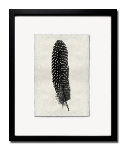 Roy Barloga Dotted Feather Print Study 5 - Photography - Shop Nectar - 1