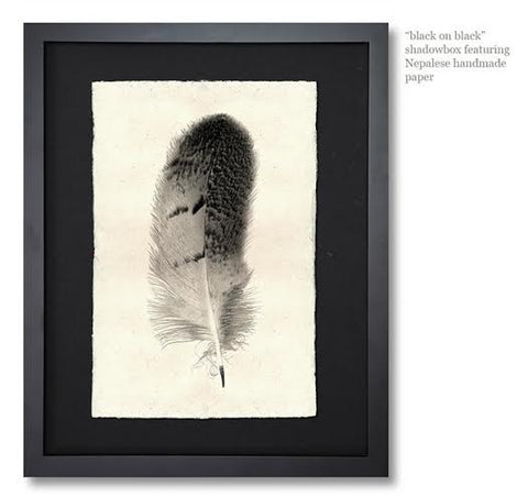 Roy Barloga Feather Print Study 8 - american-made, art, assorted-styles, bohemian-chic, Boho Chic, decor, fair-trade, feathers, handmade, photography, Roy Barloga