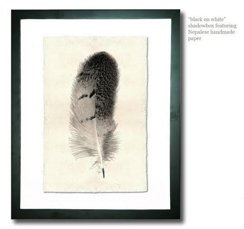 Roy Barloga Dotted Feather Print Study 5 - american-made, art, assorted-styles, bohemian-chic, Boho Chic, decor, fair-trade, feathers, handmade, photography, Roy Barloga