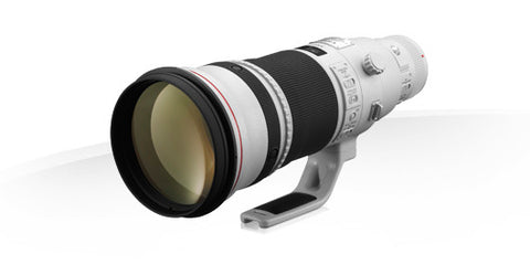 Canon EF 500mm f/4L IS II USM