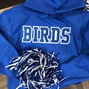 BIRDS Sparkle Sweatshirt (Youth Hooded or Crew)