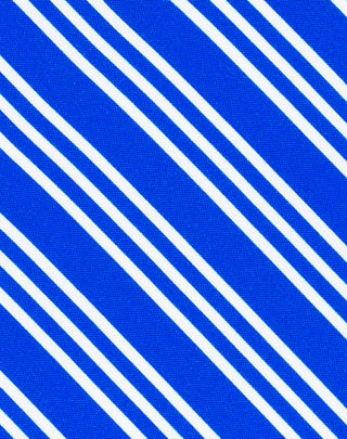 Blue Double Stripe Printed Satin