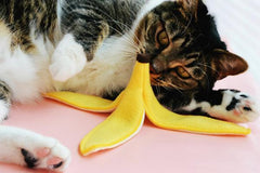 Banana Peel Catnip Toy