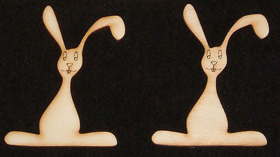 Large Bunny Shapes