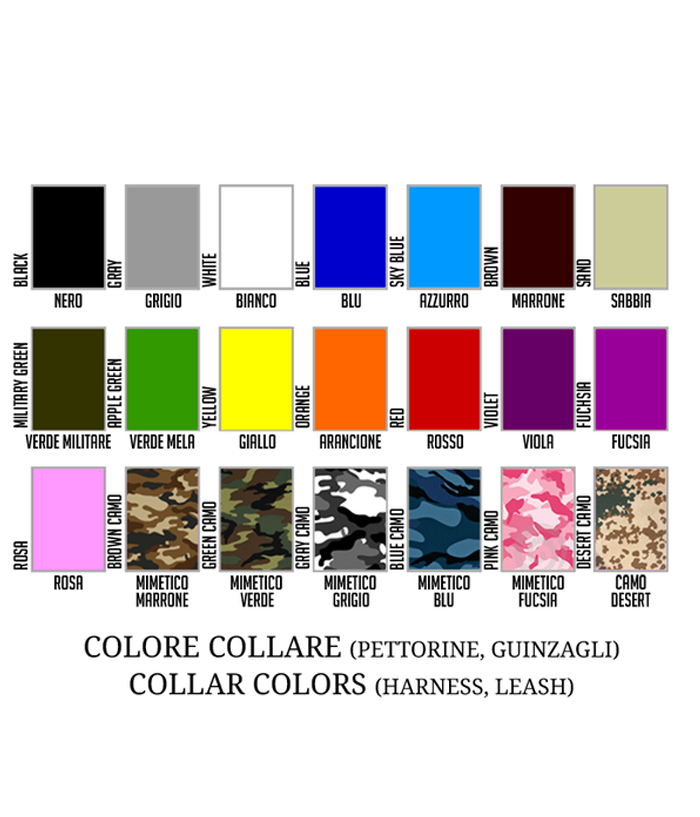 products/1-COLORI-COLLARI-2-3-4_62a543f9-4df7-43e5-92f5-26fe3f727094.png