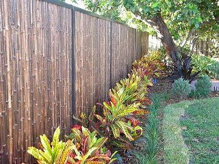 "1"" 4' x 8' Black Bamboo Fence roll"