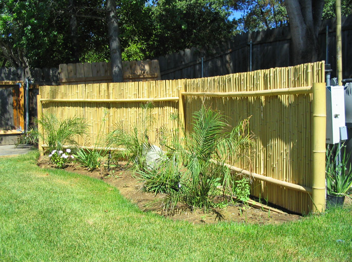 "1"" 3' x 8' Natural Bamboo Fence roll"