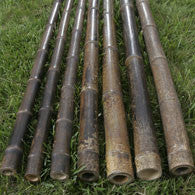 "Bamboo Poles - (10) 1"" x 10ft Black Tonkin"