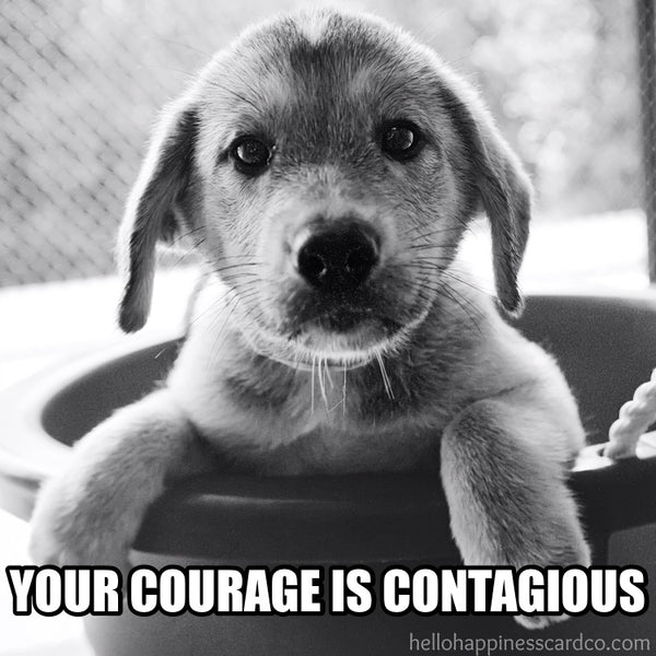 your courage is contagious encouragement puppy