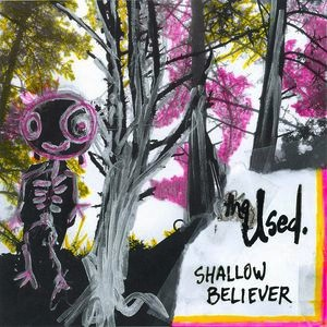 "THE USED - SHALLOW BELIEVER 12"" (RSD)"