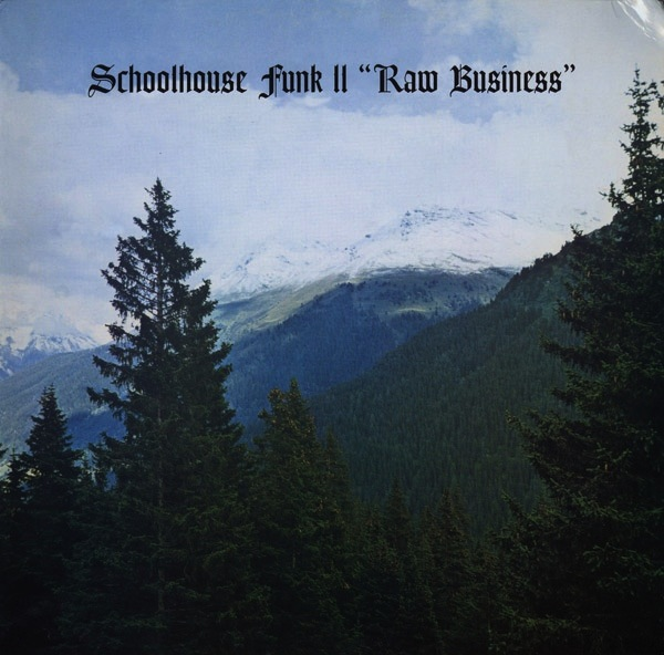 V/A - SCHOOLHOUSE FUNK II - RAW BUSINESS LP