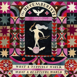 DECEMBERISTS - WHAT A TERRIBLE WORLD 2LP