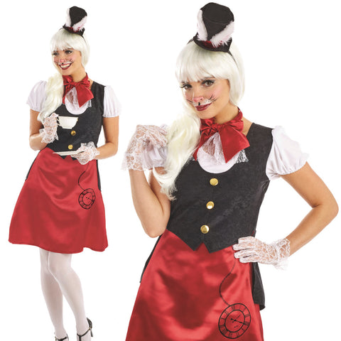 White Rabbit Or Mad Hatter Costume