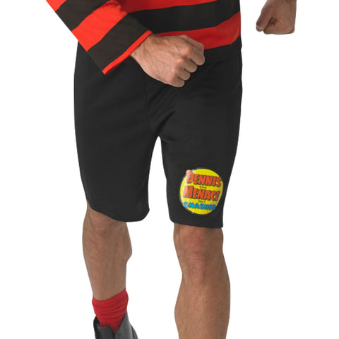 Mens Dennis the Menace Costume