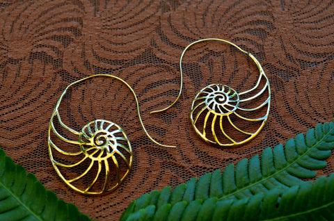 Sea Shell Brass Earrings