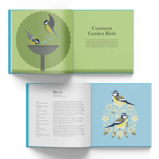 I Like Birds: A Guide to Britain's Aerial Wildlife