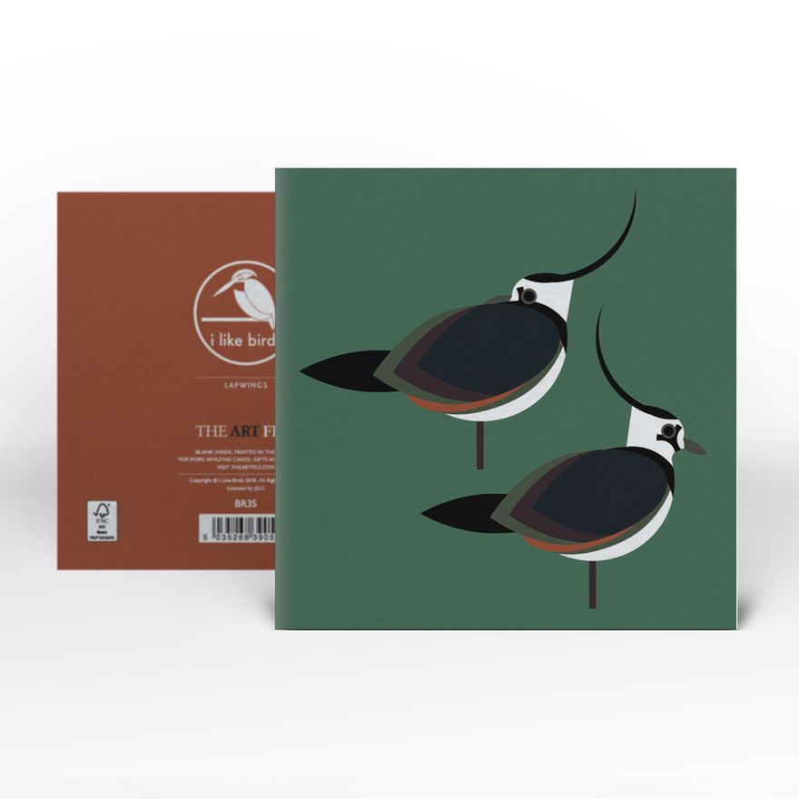 Greeting Card | Lapwing