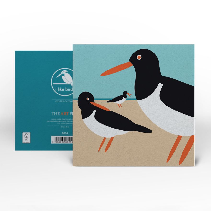 Greeting Card | Oystercatcher