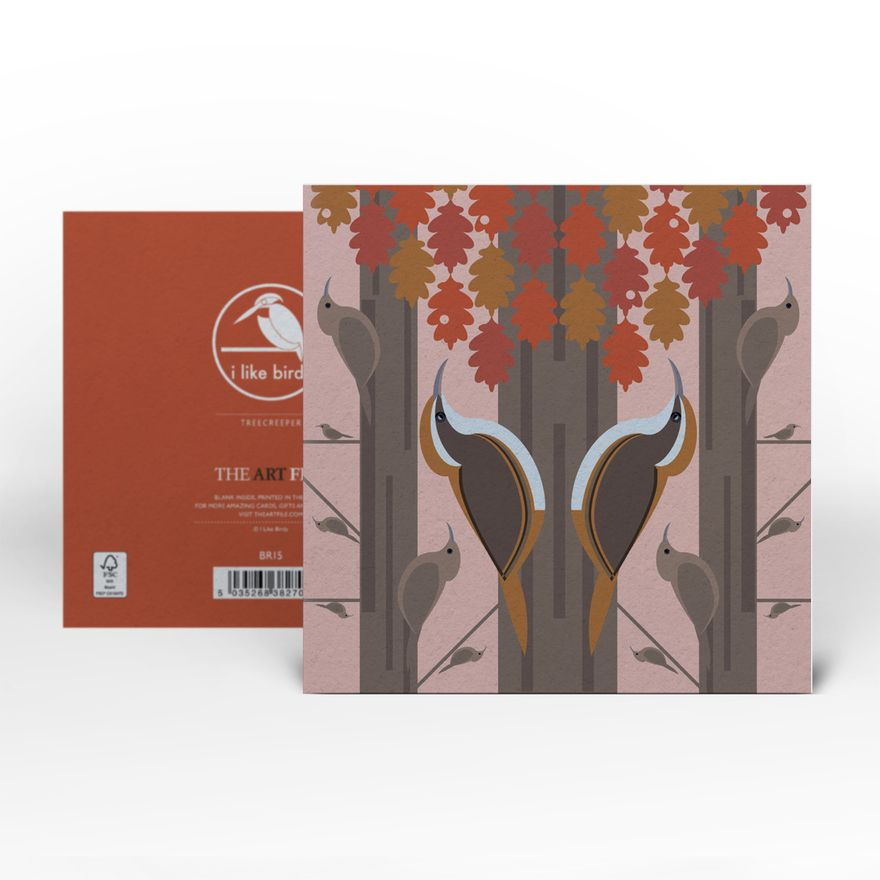 Greeting Card | Treecreeper