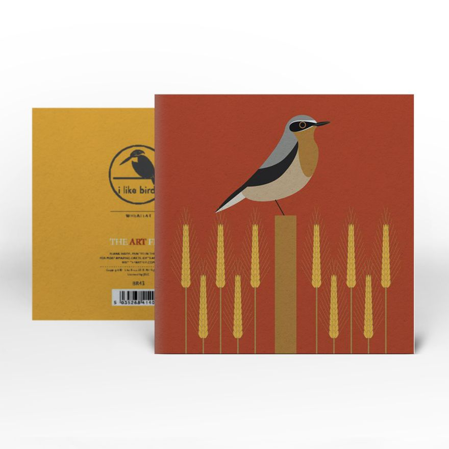 Greeting Card | Wheatear