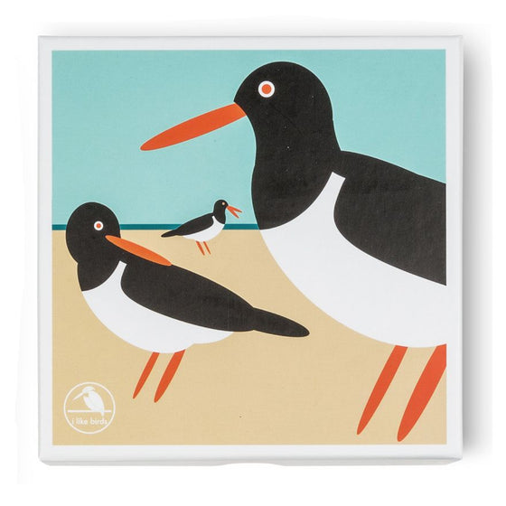 Oystercatcher Boxed Notecards - I Like Birds - Beautiful Bird Greeting Cards