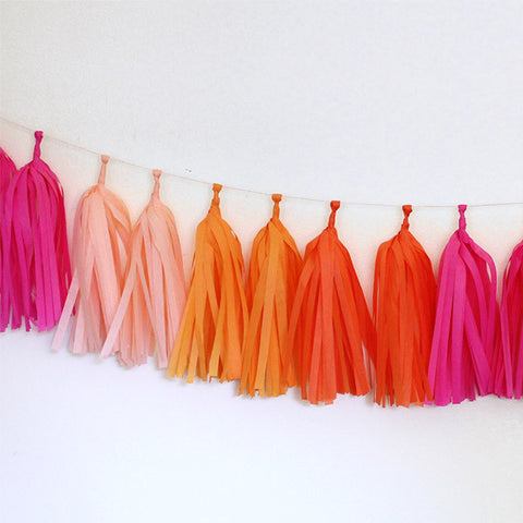 Tissue Tassel Garland Kit - Bright