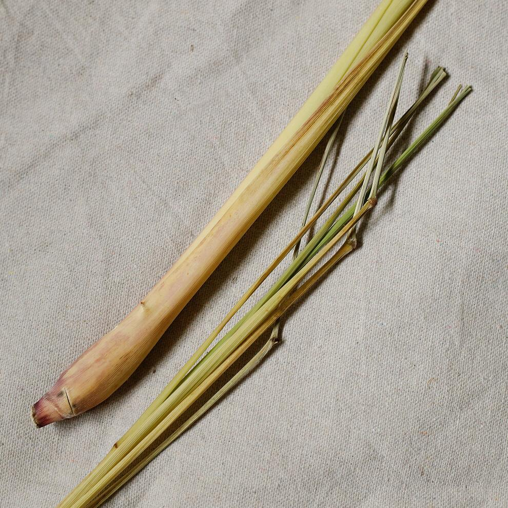 Organic Lemongrass Essential Oil - Vitruvi