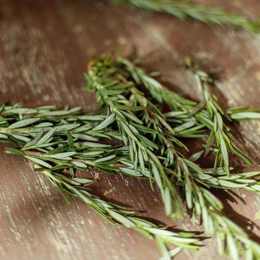 Organic Rosemary Essential Oil - Vitruvi