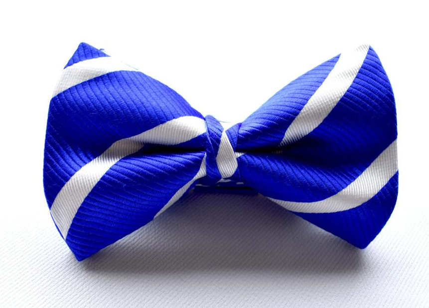 Bennett Stay Handsome Striped Bow Tie in Royal