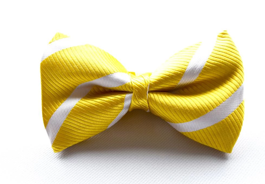Bennett Stay Handsome Striped Bow Tie in Yellow