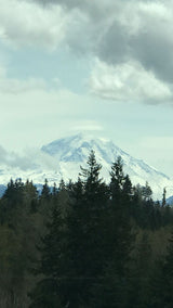 Mount rainer will greet you when you oin Danita on an doll making art retreat lesson, watercolor tutorials and live classes in Encaustic art