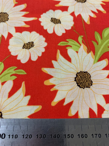 LESS THAN 2m LEFT: Daisy Path from the Meadowsweet Collection Michael Miller quilt cotton