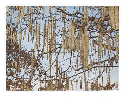 Anna Harley - Catkins. screen prints
