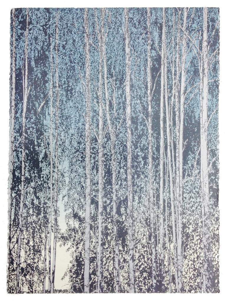 Anna Harley - 8.1. Landscape Prints: Birch and Beech. screen prints