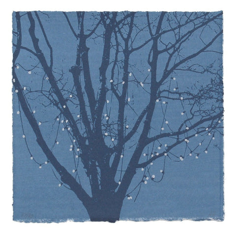 Anna Harley -  Mini Prints: Moon Fruit. screen prints