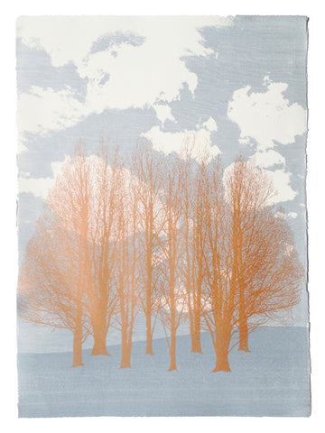 Anna Harley - Cloud Willow. screen print
